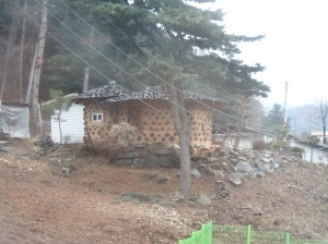 The tulli-shaped farm house outside my veranda window